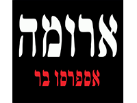 לוגו 4